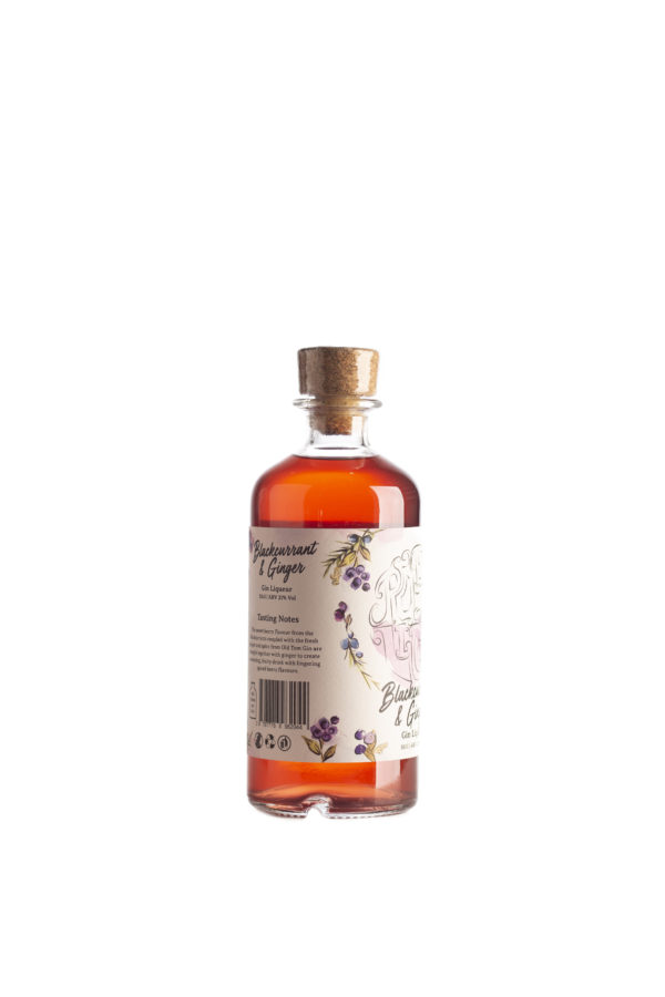 Blackcurrant and Ginger Gin Liqueur