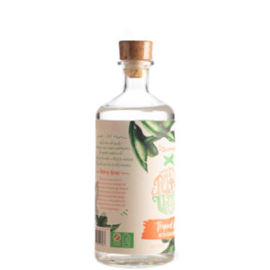 Las Iguanas Tropical Gin